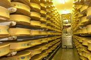 Beaufort cheese dairy