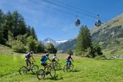 Easy rides mountain bike downhill