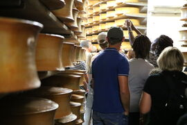 [VISIT] Beaufort cellars and manufacturing at the Fromagerie coopérative des Arves