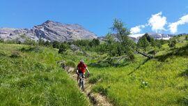 Damien Munnier - Mountain bike instructor