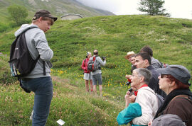 Guided tour of the Alpine Garden